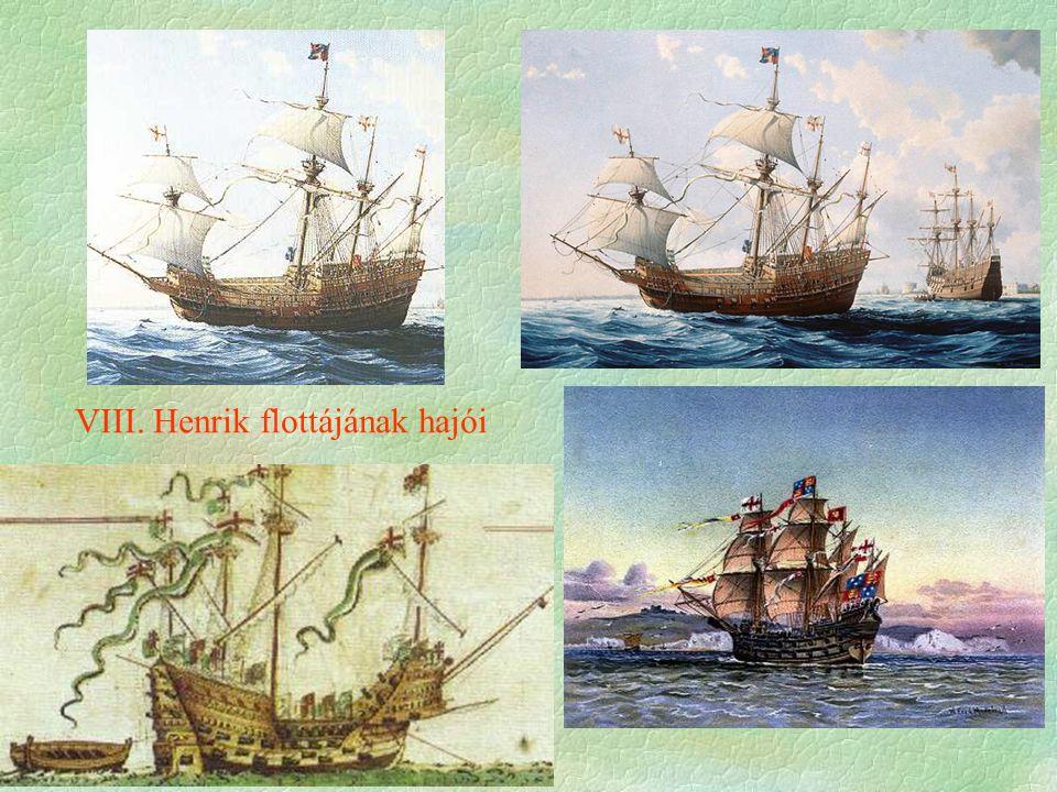 VIII. Henrik flottájának hajói