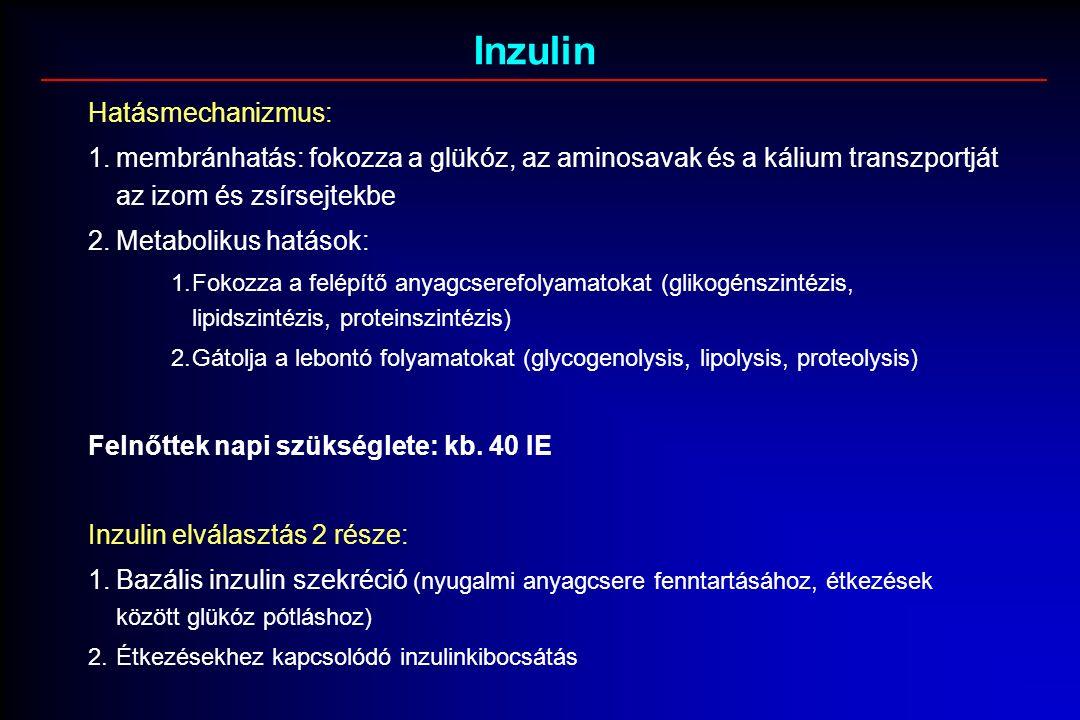Inzulin Hatásmechanizmus: 1.membránhatás: fokozza a glükóz, az aminosavak és a kálium transzportját az izom és zsírsejtekbe 2.Metabolikus hatások: 1.Fokozza a felépítő anyagcserefolyamatokat (glikogénszintézis, lipidszintézis, proteinszintézis) 2.Gátolja a lebontó folyamatokat (glycogenolysis, lipolysis, proteolysis) Felnőttek napi szükséglete: kb.