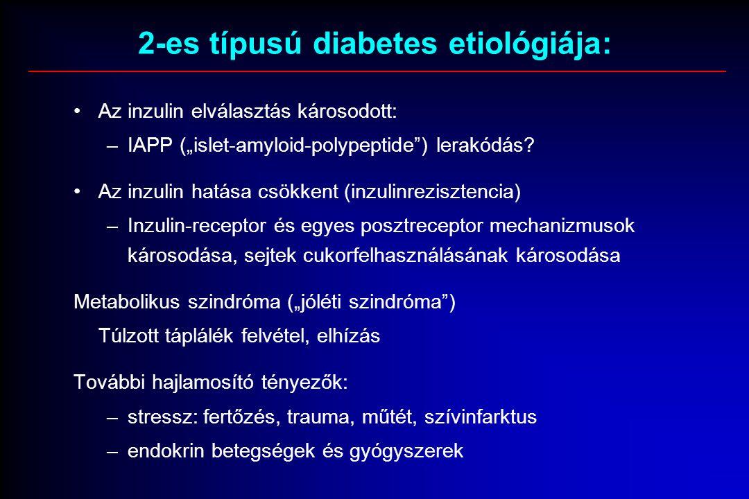 """2-es típusú diabetes etiológiája: Az inzulin elválasztás károsodott: –IAPP (""""islet-amyloid-polypeptide ) lerakódás."""