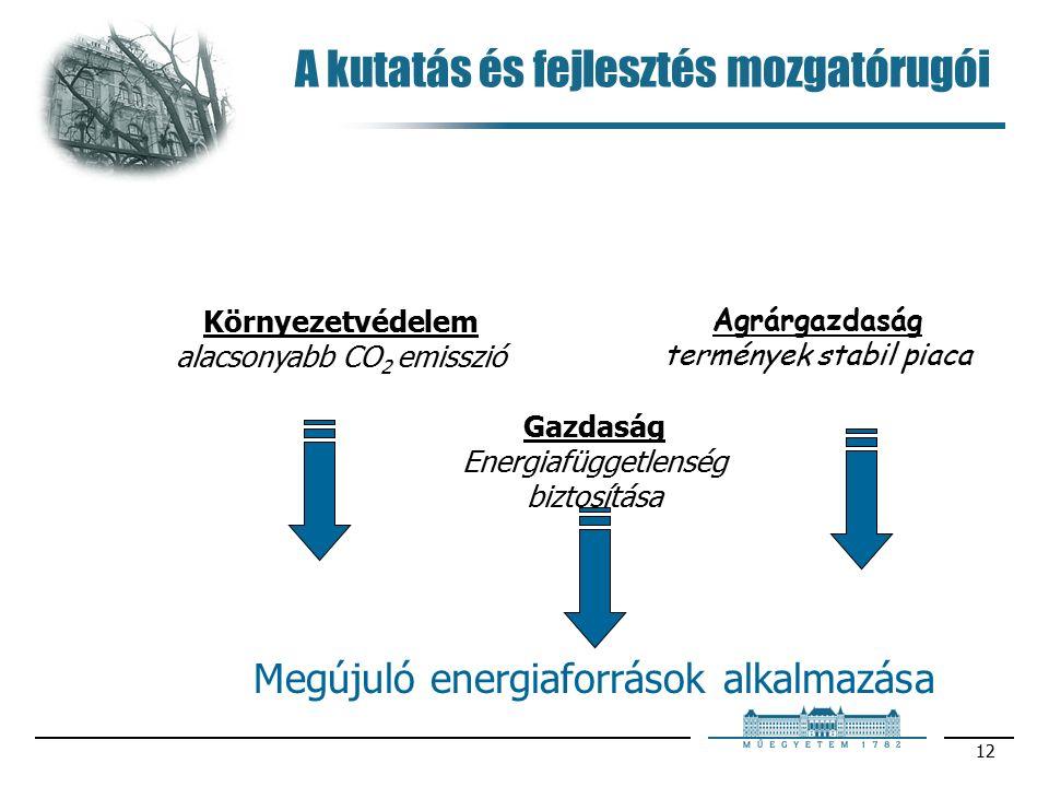 12 A kutatás és fejlesztés mozgatórugói Környezetvédelem alacsonyabb CO 2 emisszió Agrárgazdaság termények stabil piaca Gazdaság Energiafüggetlenség biztosítása Megújuló energiaforrások alkalmazása