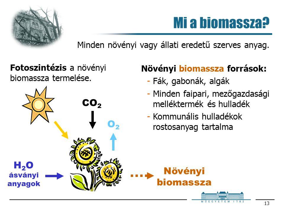 13 Mi a biomassza. Minden növényi vagy állati eredetű szerves anyag.