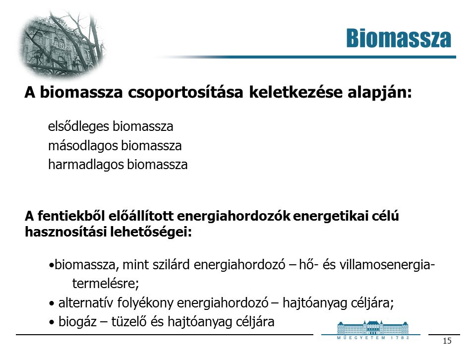 15 A biomassza csoportosítása keletkezése alapján: elsődleges biomassza másodlagos biomassza harmadlagos biomassza A fentiekből előállított energiahordozók energetikai célú hasznosítási lehetőségei: biomassza, mint szilárd energiahordozó – hő- és villamosenergia- termelésre; alternatív folyékony energiahordozó – hajtóanyag céljára; biogáz – tüzelő és hajtóanyag céljára Biomassza