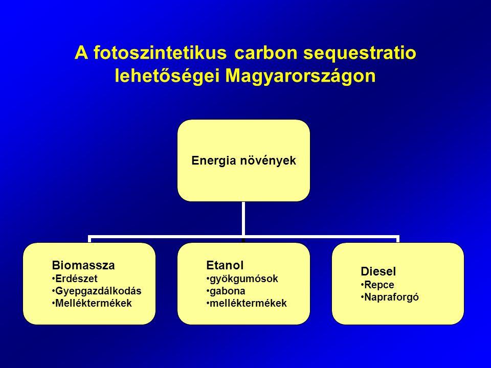 A fotoszintetikus carbon sequestratio lehetőségei Magyarországon Energia növények Biomassza Erdészet Gyepgazdálkodás Melléktermékek Etanol gyökgumósok gabona melléktermékek Diesel Repce Napraforgó