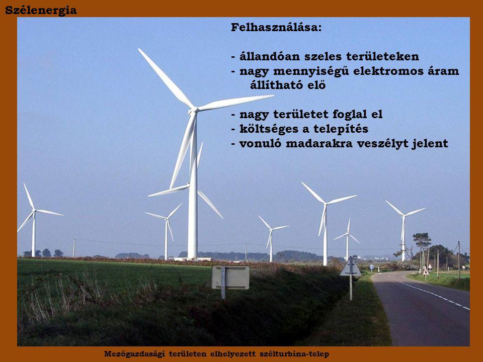 Szélenergia Mezőgazdasági területen elhelyezett szélturbina-telep Felhasználása: - állandóan szeles területeken - nagy mennyiségű elektromos áram állítható elő - nagy területet foglal el - költséges a telepítés - vonuló madarakra veszélyt jelent