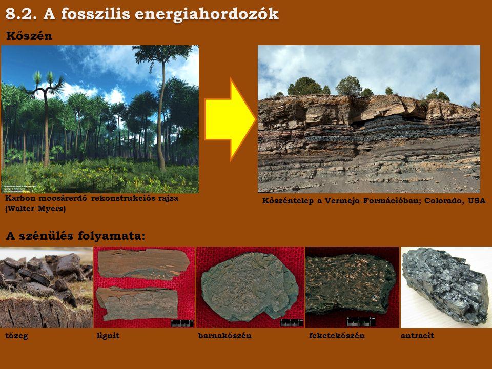 8.2. A fosszilis energiahordozók Kőszén Karbon mocsárerdő rekonstrukciós rajza (Walter Myers) Kőszéntelep a Vermejo Formációban; Colorado, USA A szénü