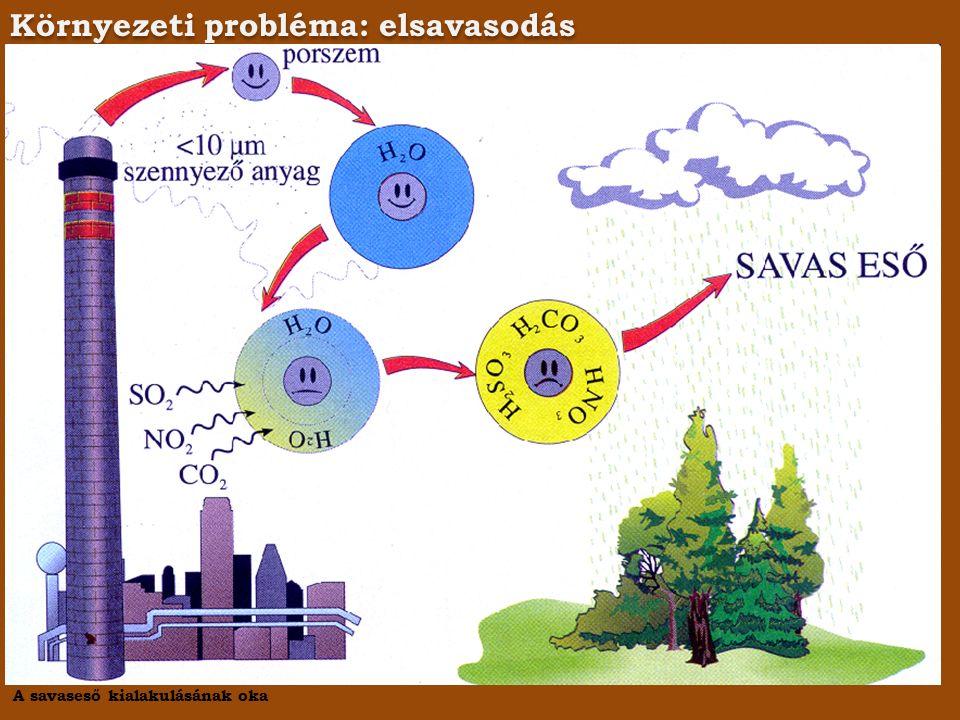 Környezeti probléma: elsavasodás A savaseső kialakulásának oka