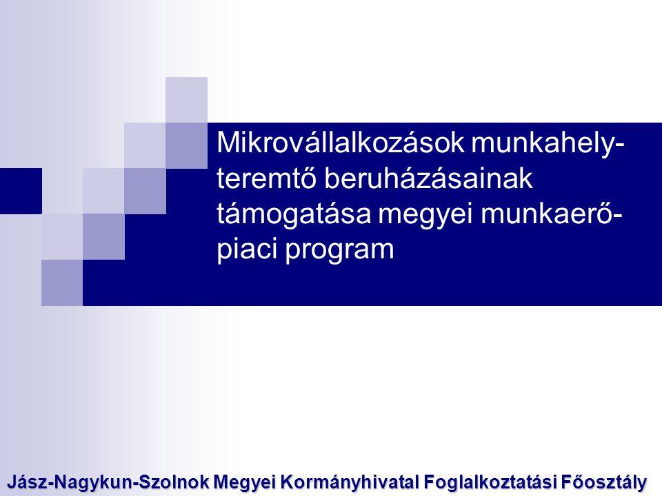 A munkaerő-piaci program célja: - megye gazdaságának megerősítése - új munkahelyek teremtése a meglévő munkahelyek megőrzésével - mikrovállalkozások piaci pozíciójának megerősítése, bővítése - nyilvántartott álláskeresők számának csökkentése - 50 év feletti álláskeresők elhelyezkedésének segítése A program célcsoportja: - Mikrovállalkozások - Álláskeresők A program szolgáltatási és támogatási elemei: - Álláskeresőknek munkaerőpiaci szolgáltatás - Mikrovállalkozásoknak munkahelyteremtő támogatás