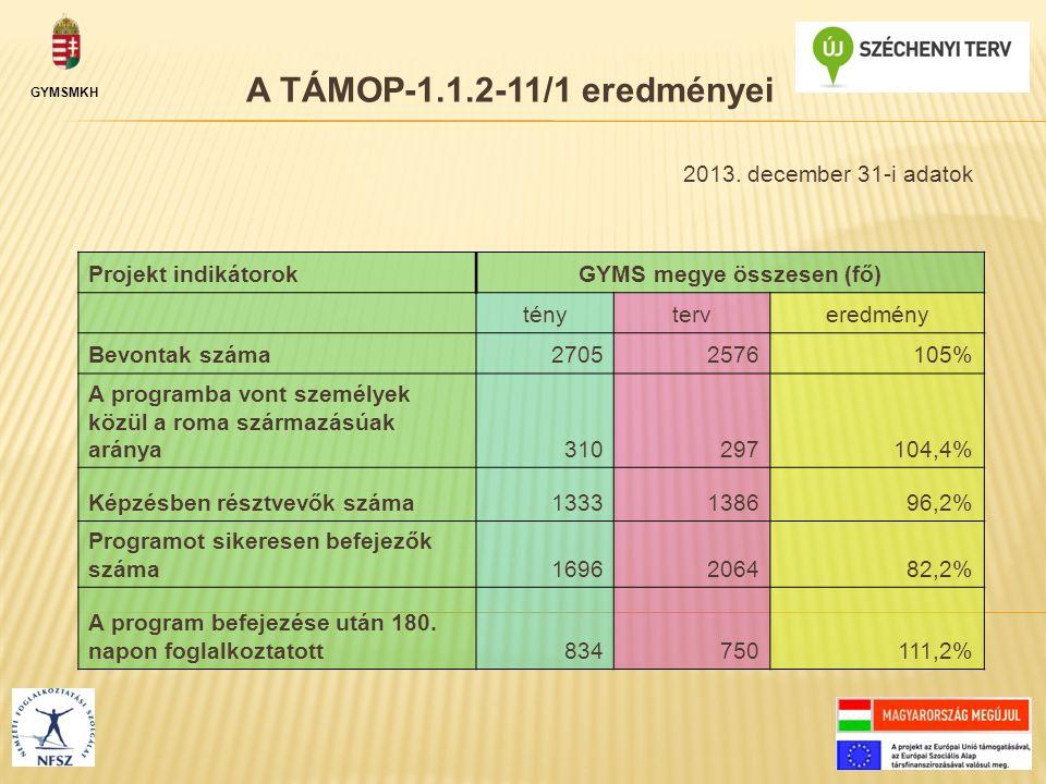 GYMSMKH A TÁMOP-1.1.2-11/1 eredményei Projekt indikátorokGYMS megye összesen (fő) tényterveredmény Bevontak száma27052576105% A programba vont személy