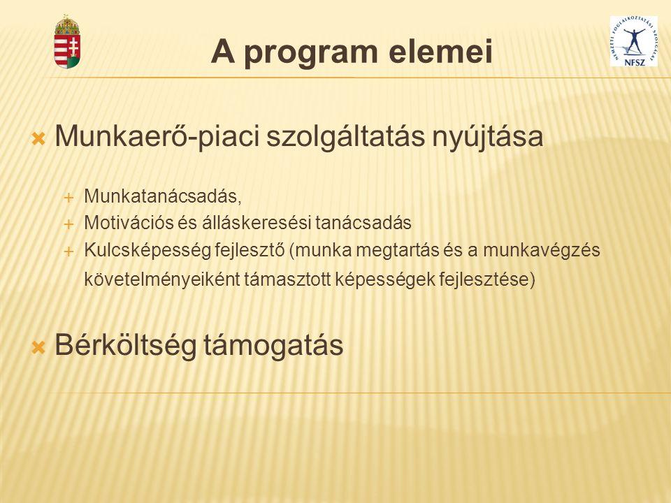 A program elemei  Munkaerő-piaci szolgáltatás nyújtása  Munkatanácsadás,  Motivációs és álláskeresési tanácsadás  Kulcsképesség fejlesztő (munka m