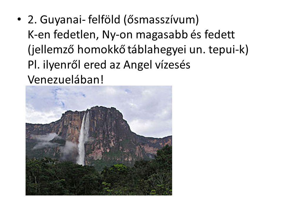 2. Guyanai- felföld (ősmasszívum) K-en fedetlen, Ny-on magasabb és fedett (jellemző homokkő táblahegyei un. tepui-k) Pl. ilyenről ered az Angel vízesé