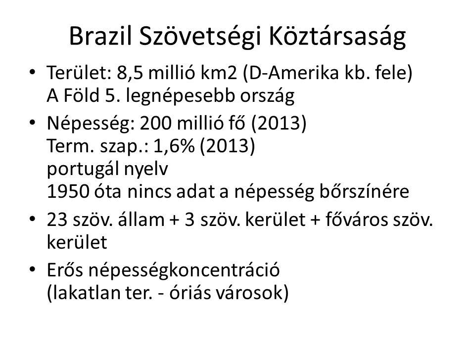 Brazil Szövetségi Köztársaság Terület: 8,5 millió km2 (D-Amerika kb. fele) A Föld 5. legnépesebb ország Népesség: 200 millió fő (2013) Term. szap.: 1,