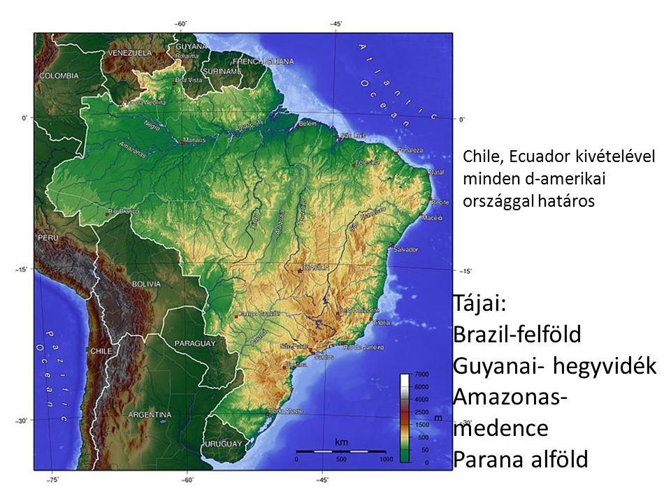 Chile, Ecuador kivételével minden d-amerikai országgal határos Tájai: Brazil-felföld Guyanai- hegyvidék Amazonas- medence Parana alföld