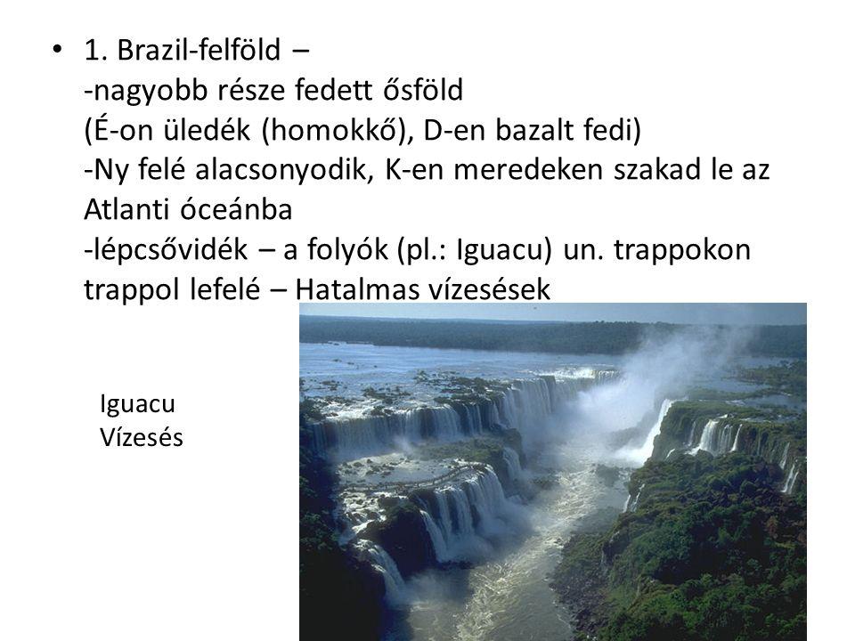 1. Brazil-felföld – -nagyobb része fedett ősföld (É-on üledék (homokkő), D-en bazalt fedi) -Ny felé alacsonyodik, K-en meredeken szakad le az Atlanti