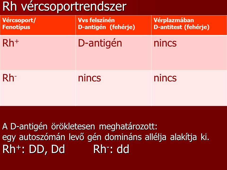 A D-antitest immunreakció során alakul ki.