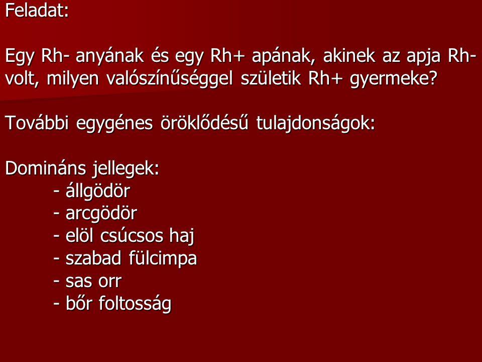 Kromoszóma rendellenességek: - A testi kromoszómaszám hibás pl.