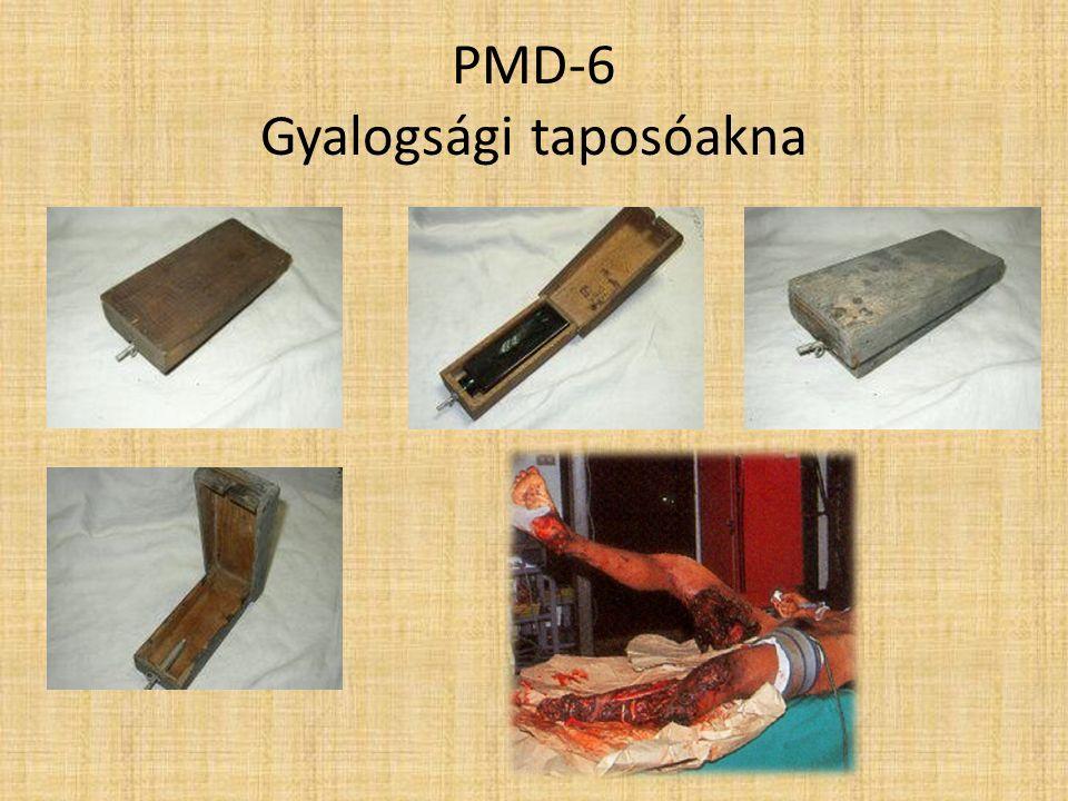PMN Gyalogsági taposó akna
