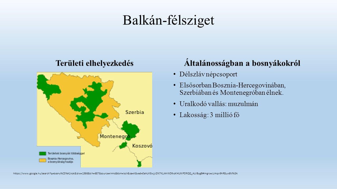 Balkán-félsziget Területi elhelyezkedésÁltalánosságban a bosnyákokról Délszláv népcsoport Elsősorban Bosznia-Hercegovinában, Szerbiában és Montenegróban élnek.