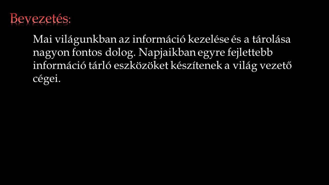 Mai világunkban az információ kezelése és a tárolása nagyon fontos dolog.