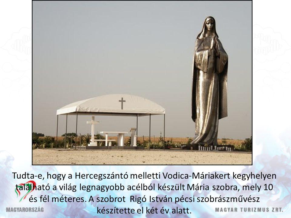 Tudta-e, hogy a Hercegszántó melletti Vodica-Máriakert kegyhelyen található a világ legnagyobb acélból készült Mária szobra, mely 10 és fél méteres.