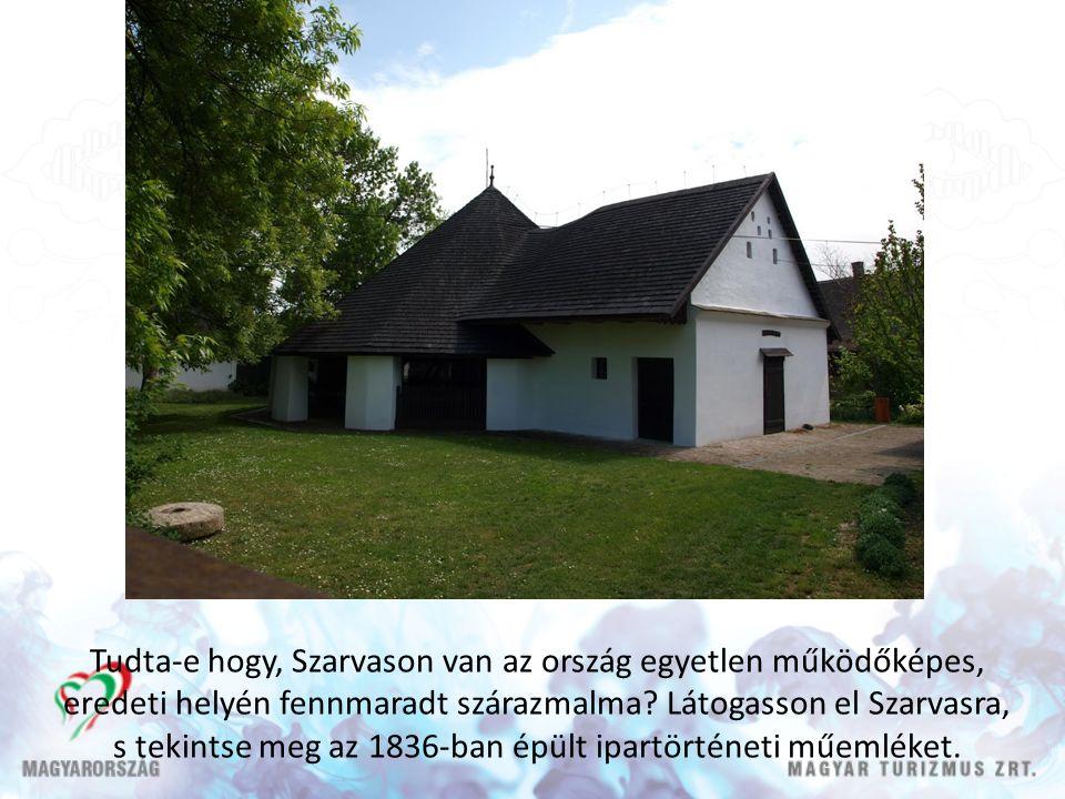 Tudta-e hogy, Szarvason van az ország egyetlen működőképes, eredeti helyén fennmaradt szárazmalma.