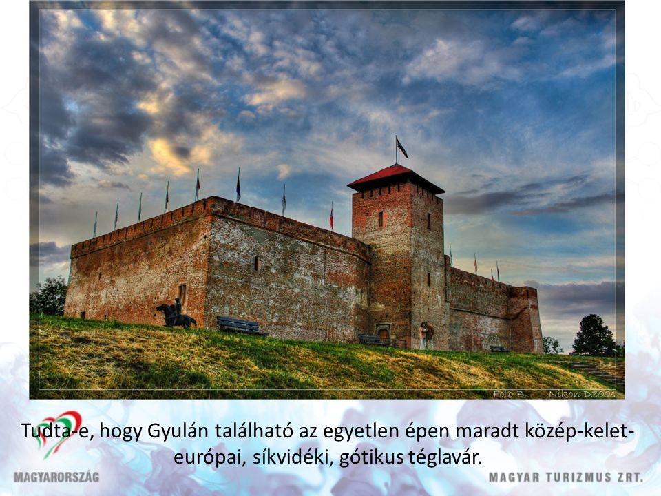 Tudta-e, hogy Gyulán található az egyetlen épen maradt közép-kelet- európai, síkvidéki, gótikus téglavár.