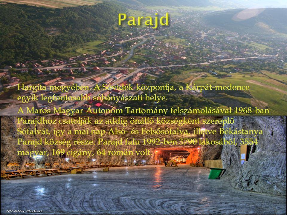 Hargita megyében. A Sóvidék központja, a Kárpát-medence egyik legfontosabb sóbányászati helye.
