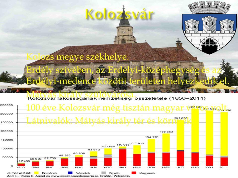 Kolozs megye székhelye.