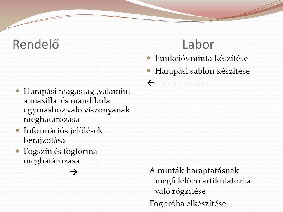 RendelőLabor Harapási magasság,valamint a maxilla és mandibula egymáshoz való viszonyának meghatározása Információs jelölések berajzolása Fogszín és f