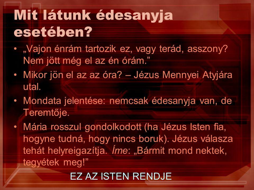 """Echad Egy = """"echad héber szó = összetett egész 4Mózes 13,24 – """"lemetszettek ott egy szőlővesszőt egy szőlőfürttel 1Mózes 11,6 – """"egy nép, s az egésznek egy a nyelve (a Bábel tornyát építők) 1Mózes 2,24 – """"lesznek ketten egy test 5Mózes 6,4 """"Halld, Izrael: az Úr, a mi Istenünk, egy Úr! Egy ember, akit testrészek alkotnak"""