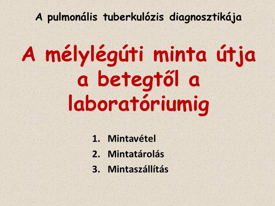 Mintavétel Elsődleges mintavételi lehetőségek : Spontán: reggeli ébredés utáni köpet Indukált: indukált köpet Ha a beteg nem tud köpetet adni: ébredés utáni, éhgyomri gyomorbennék-aspirátum (gyermekek esetén) bronchoszkópos mintavétel