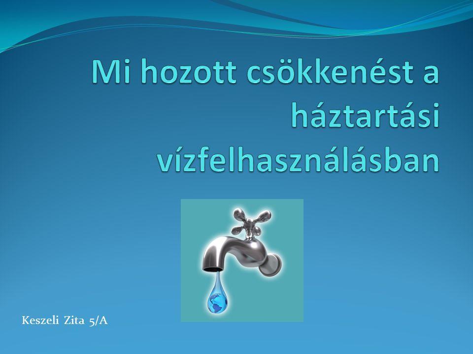 Keszeli Zita 5/A