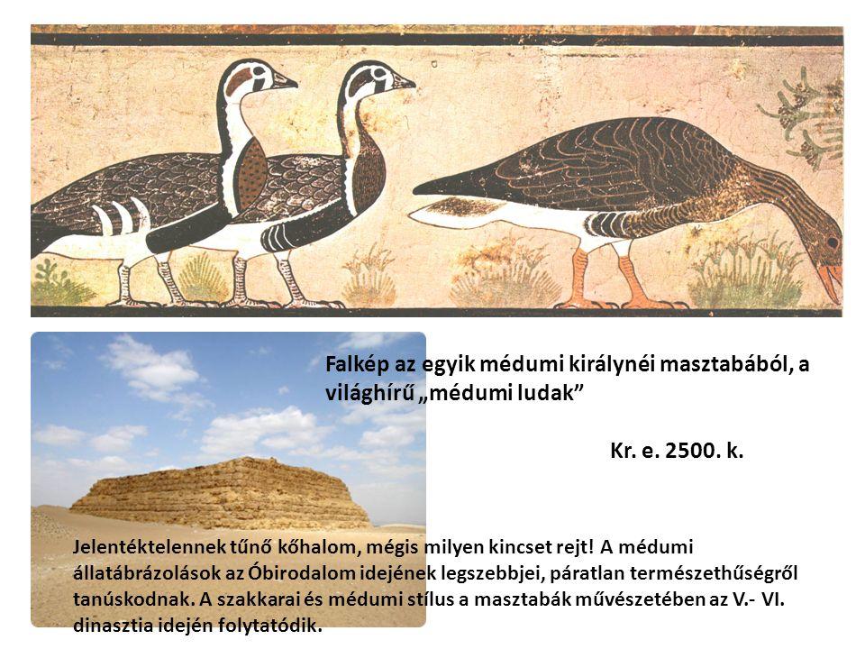 """Falkép az egyik médumi királynéi masztabából, a világhírű """"médumi ludak"""" Kr. e. 2500. k. Jelentéktelennek tűnő kőhalom, mégis milyen kincset rejt! A m"""