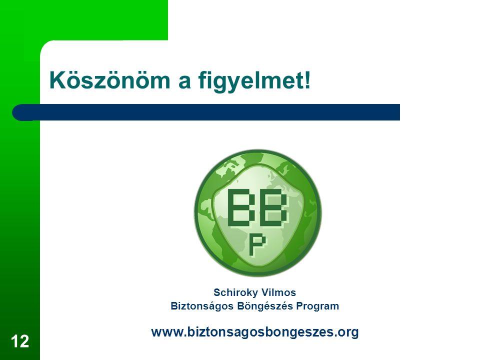 12 Köszönöm a figyelmet! Schiroky Vilmos Biztonságos Böngészés Program www.biztonsagosbongeszes.org