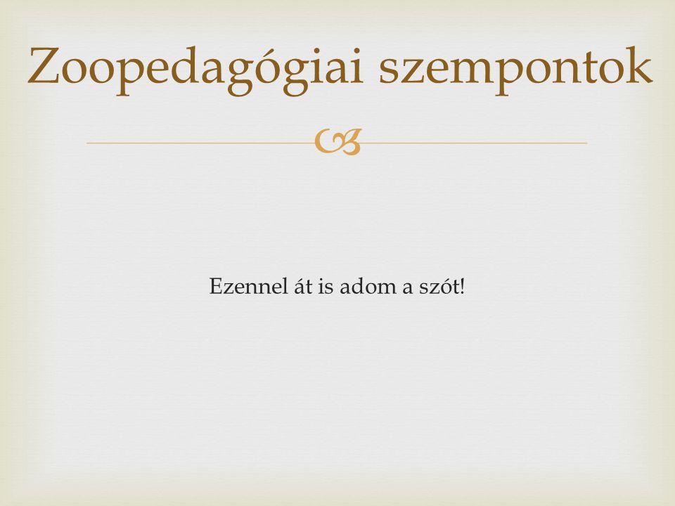  Ezennel át is adom a szót! Zoopedagógiai szempontok