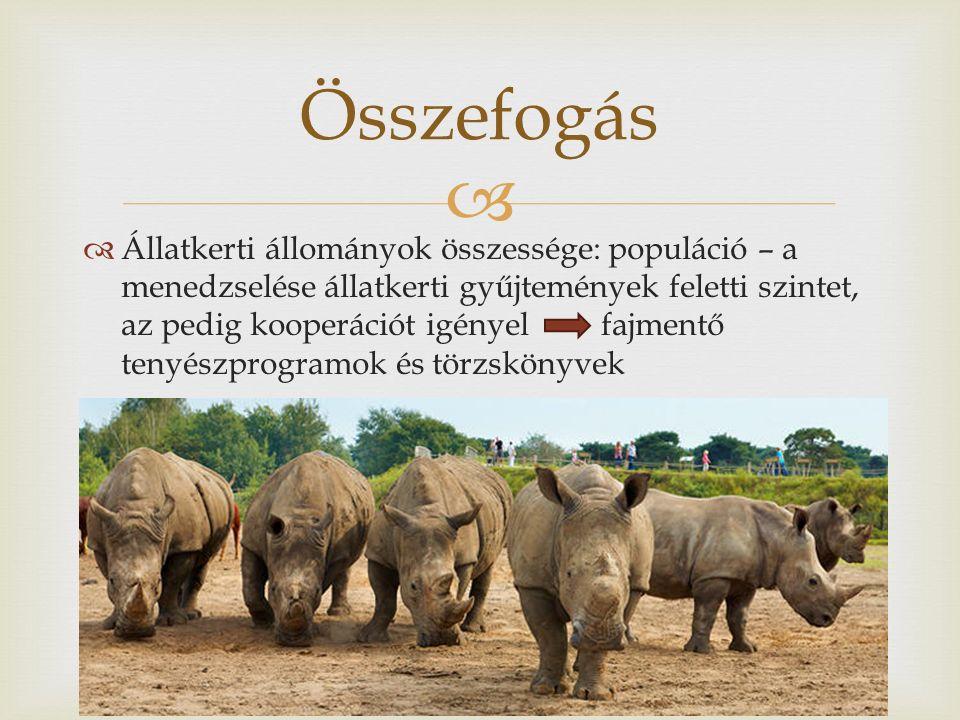   Állatkerti állományok összessége: populáció – a menedzselése állatkerti gyűjtemények feletti szintet, az pedig kooperációt igényel fajmentő tenyészprogramok és törzskönyvek Összefogás