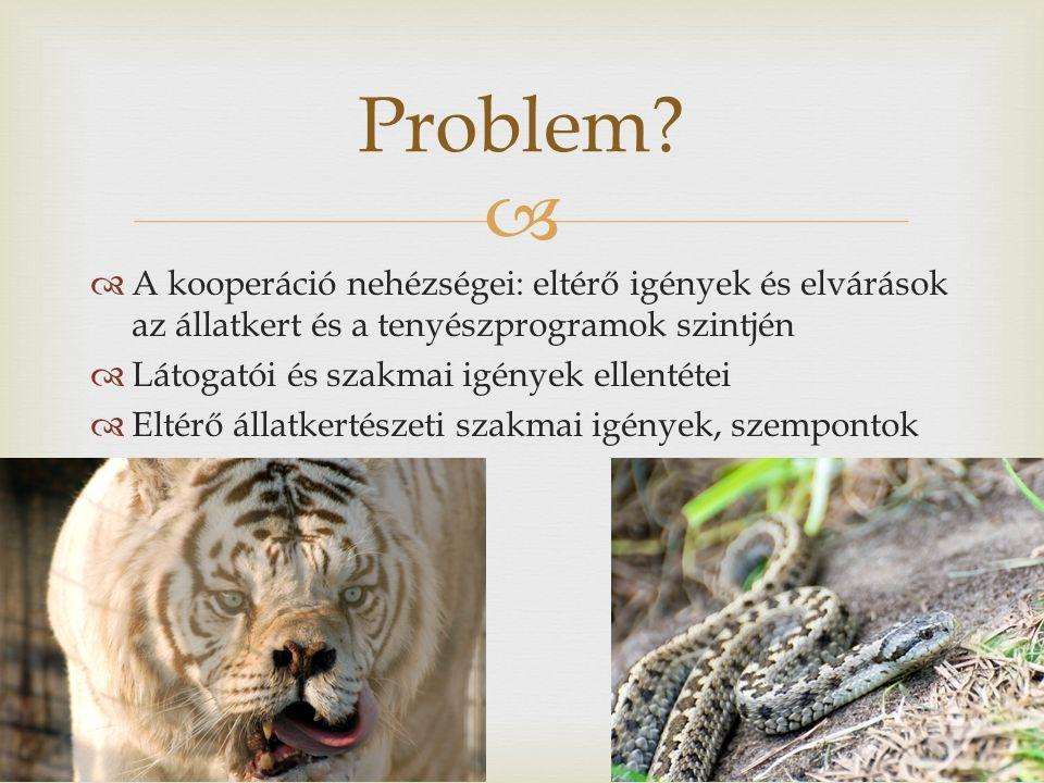   A kooperáció nehézségei: eltérő igények és elvárások az állatkert és a tenyészprogramok szintjén  Látogatói és szakmai igények ellentétei  Eltérő állatkertészeti szakmai igények, szempontok Problem