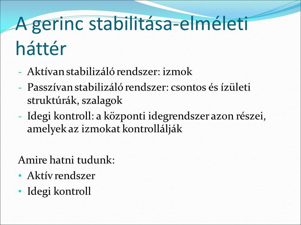 A gerinc stabilitása-elméleti háttér - Aktívan stabilizáló rendszer: izmok - Passzívan stabilizáló rendszer: csontos és ízületi struktúrák, szalagok -