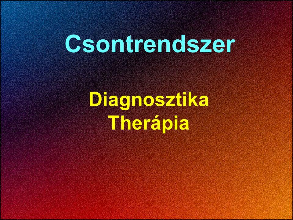 Csontrendszer Diagnosztika Therápia