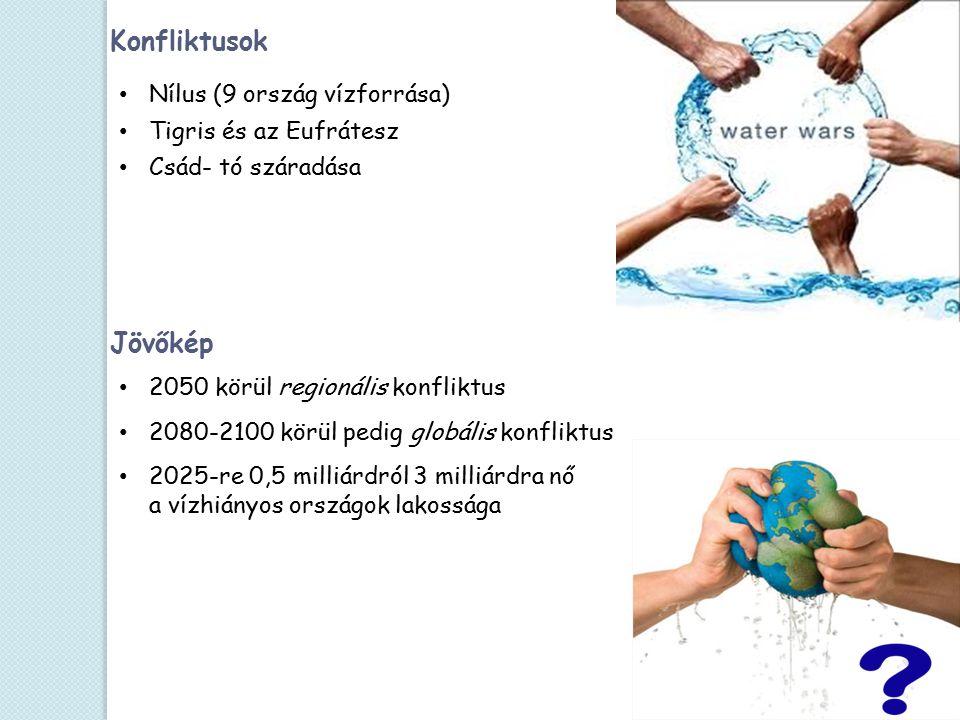 Jövőkép Konfliktusok Nílus (9 ország vízforrása) Tigris és az Eufrátesz Csád- tó száradása 2050 körül regionális konfliktus 2080-2100 körül pedig globális konfliktus 2025-re 0,5 milliárdról 3 milliárdra nő a vízhiányos országok lakossága