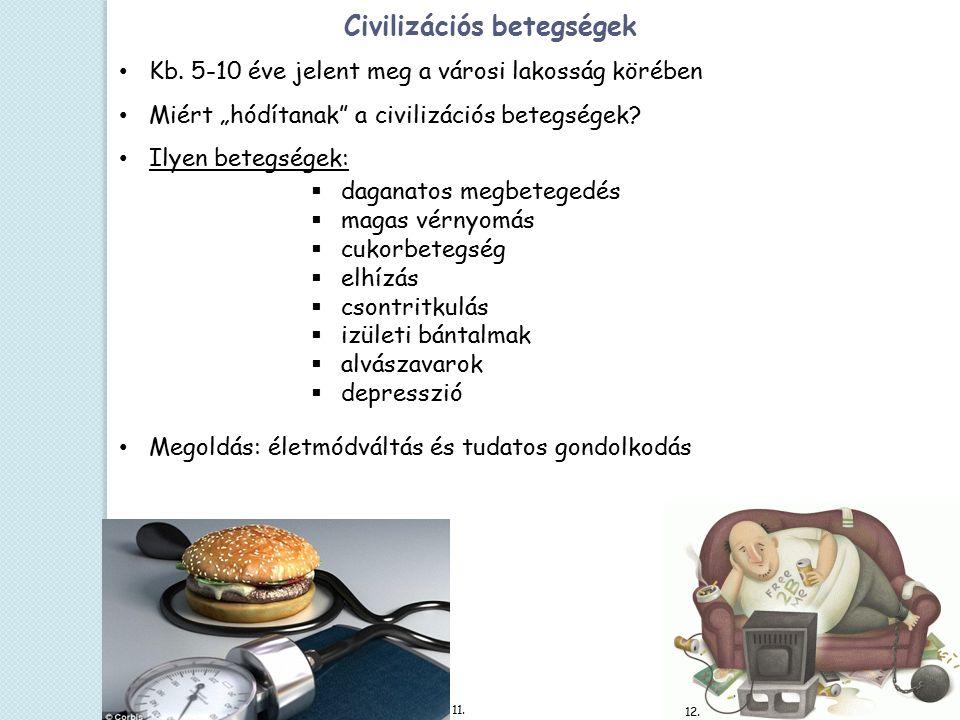 Civilizációs betegségek Kb.