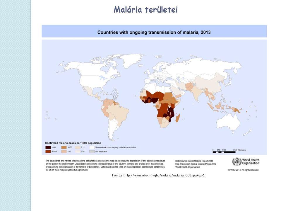 Forrás: http://www.who.int/gho/malaria/malaria_003.jpg ua=1 Malária területei