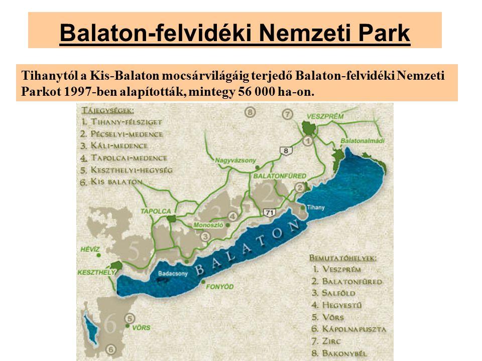 Balaton-felvidéki Nemzeti Park Tihanytól a Kis-Balaton mocsárvilágáig terjedő Balaton-felvidéki Nemzeti Parkot 1997-ben alapították, mintegy 56 000 ha