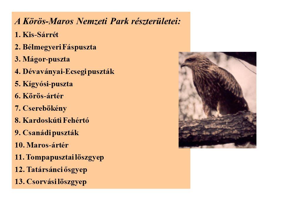 A Körös-Maros Nemzeti Park részterületei: 1. Kis-Sárrét 2. Bélmegyeri Fáspuszta 3. Mágor-puszta 4. Dévaványai-Ecsegi puszták 5. Kígyósi-puszta 6. Körö