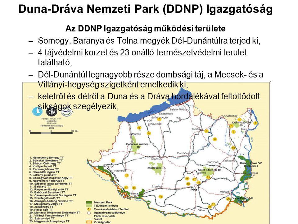 Duna-Dráva Nemzeti Park (DDNP) Igazgatóság Az DDNP Igazgatóság működési területe –Somogy, Baranya és Tolna megyék Dél-Dunántúlra terjed ki, –4 tájvéde