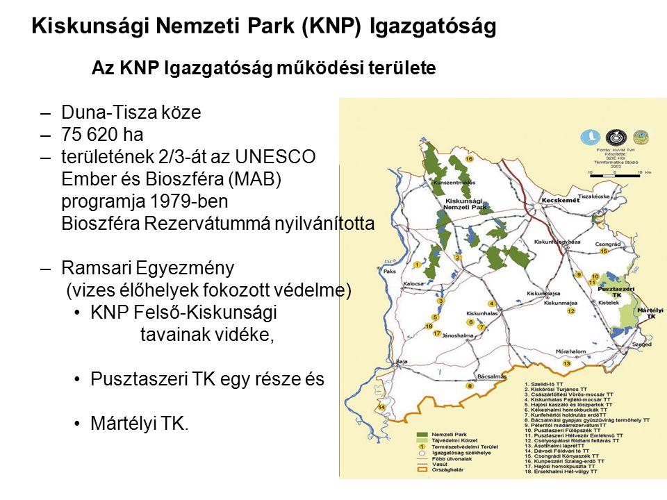 Kiskunsági Nemzeti Park (KNP) Igazgatóság Az KNP Igazgatóság működési területe –Duna-Tisza köze –75 620 ha –területének 2/3-át az UNESCO Ember és Bios