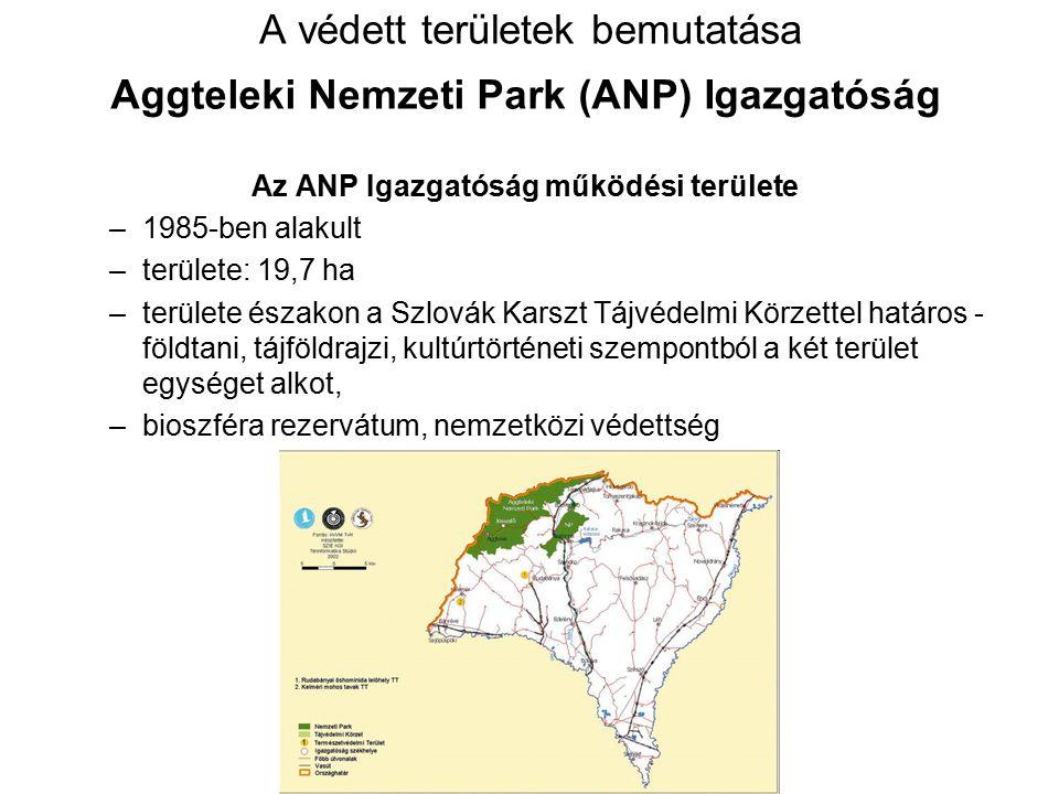 A védett területek bemutatása Aggteleki Nemzeti Park (ANP) Igazgatóság Az ANP Igazgatóság működési területe –1985-ben alakult –területe: 19,7 ha –terü