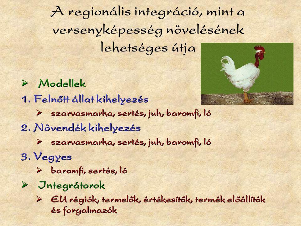 A regionális integráció, mint a versenyképesség növelésének lehetséges útja  Modellek 1.
