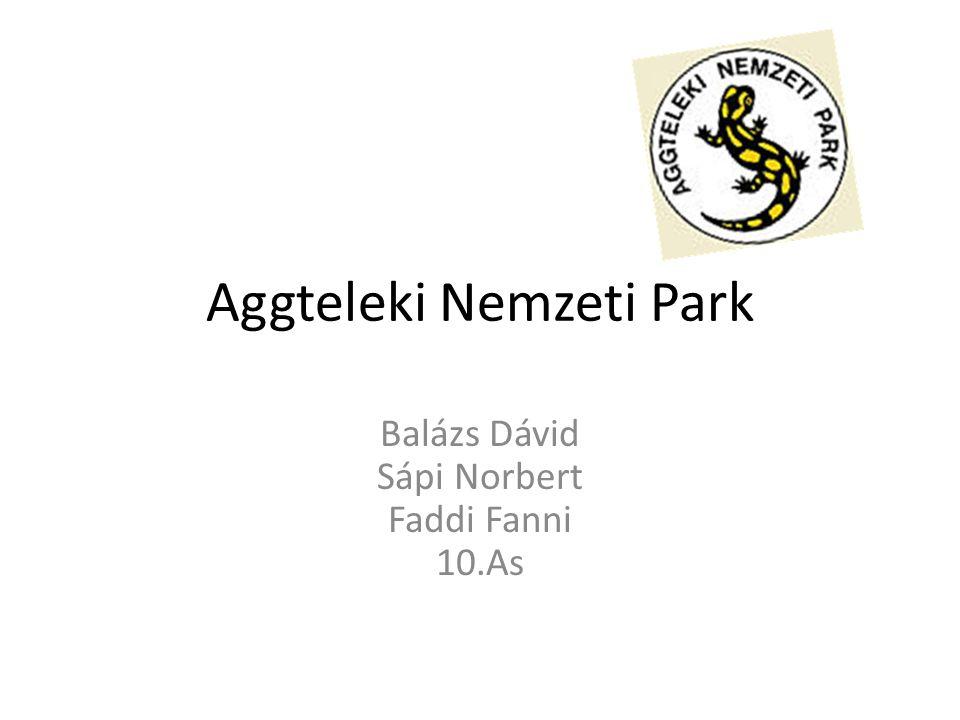Aggteleki Nemzeti Park Balázs Dávid Sápi Norbert Faddi Fanni 10.As