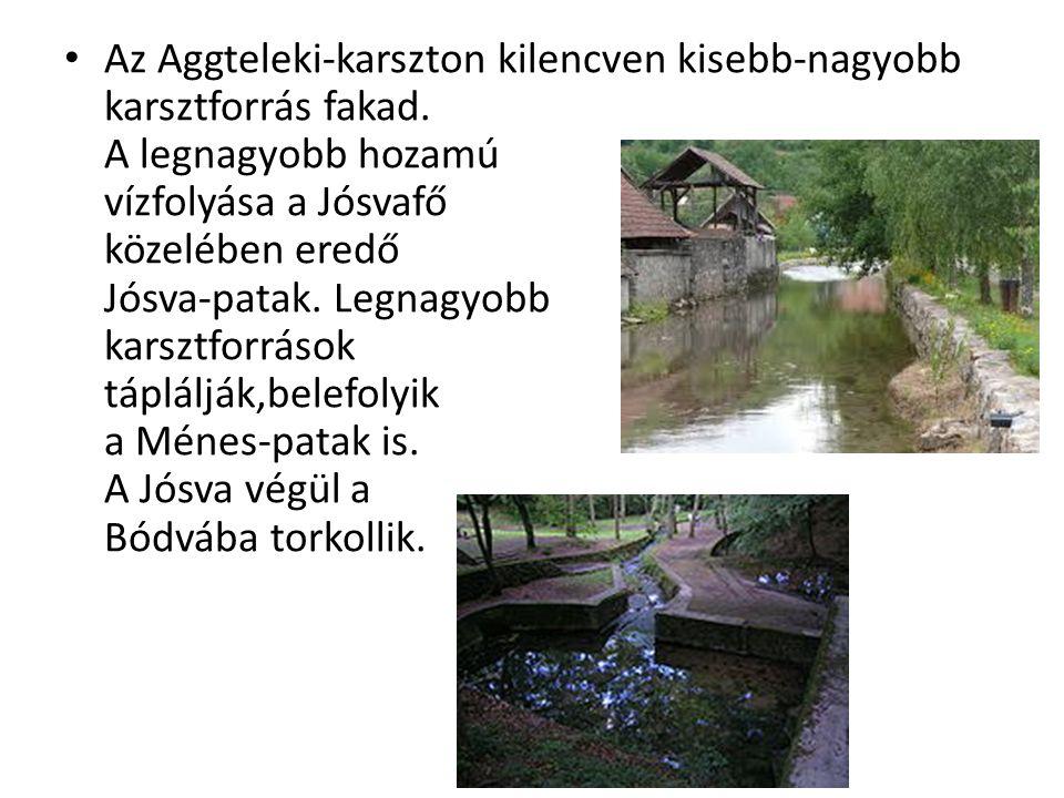 Az Aggteleki-karszton kilencven kisebb-nagyobb karsztforrás fakad. A legnagyobb hozamú vízfolyása a Jósvafő közelében eredő Jósva-patak. Legnagyobb ka