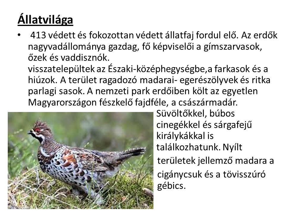 Állatvilága 413 védett és fokozottan védett állatfaj fordul elő. Az erdők nagyvadállománya gazdag, fő képviselői a gímszarvasok, őzek és vaddisznók. v
